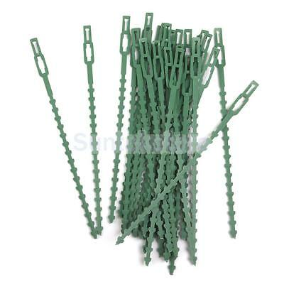 30 Large Garden Plants Cable Ties Gardening Plastic Clips Climbers Supports