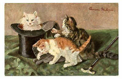 vintage cat postcard gorgeous trio of cats in top hat gloves & cane early 1900s