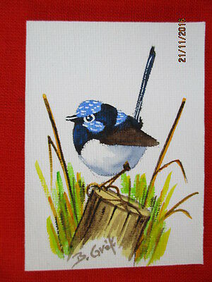 Blue Wren  - Original Acrylic Aceo On Canvas Panel - Ready To Display