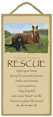 ADVICE FROM A RESCUE wood INSPIRATIONAL SIGN wall PLAQUE dog cat horse animal