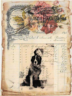Bernese Mountain Dog Girl French Ledger Roses*quilt Art Fabric Block*5X7