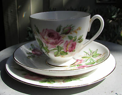Stunning Vintage Queen Anne Bone China Trio Roses