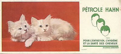 Buvard / Publicitaire / Petrole Hahn / Sante Des Cheveux / Chat / Cat