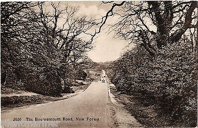 Bournemouth Road, New Forest, old postcard, unposted