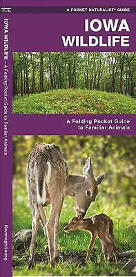 Iowa Wildlife: A Folding Pocket Guide to Familiar Species by James Kavanagh (Eng