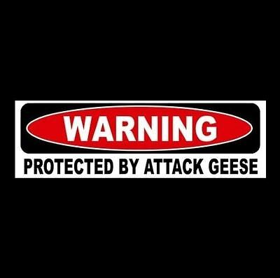 "Funny ""PROTECTED BY ATTACK GEESE"" window decal BUMPER STICKER sign, goose, car"