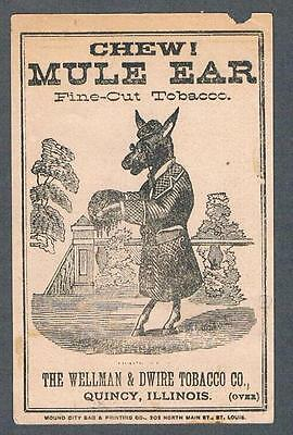 Original 1900's Quincy Illinois Mule Ear Tobacco Advertising Trade Card