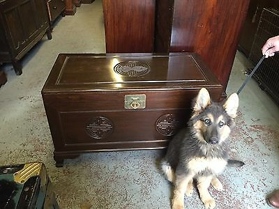Carved Chinese Camphor Wood Chest