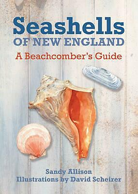 Seashells of New England: A Beachcomber's Guide by David Scheirer Paperback Book