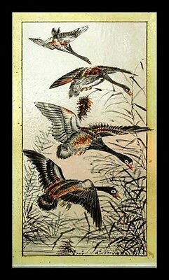 Rare Antique English Painted Geese In Flight Victorian Stained Glass Window