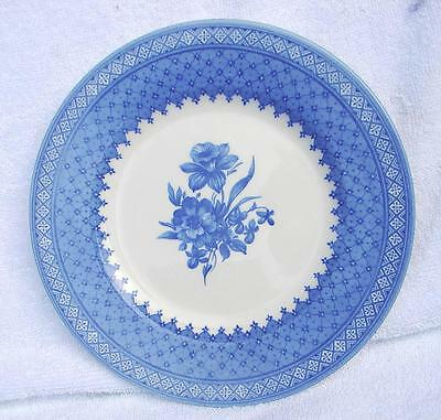 4 x Queens Out Of The Blue 21.5 cm plates Daffodil Pretty Blue and White