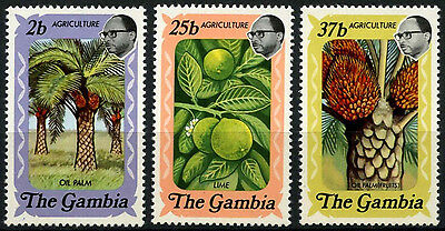 Gambia 1973 SG#304-6 Agriculture MNH Set #D45994