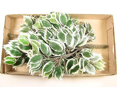 Wholesale 24x Artificial Ficus 42 Leaves Variegated Greenery Stems /Sprays