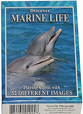 Discover Marine Life set of 52 playing cards + Jokers (sts)