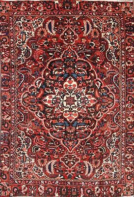 Great Condition Floral 6x10 Bakhtiari Persian Oriental Area Rug Wool 9' 8 x 6' 2