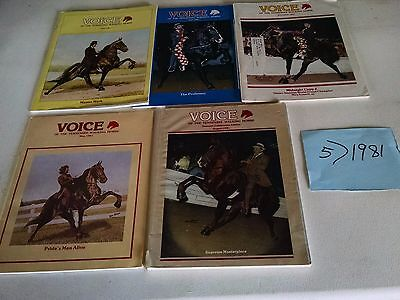 Vintage 1981  Voice of The Tennessee Walking Horse  Magazine 5