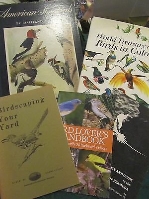 Lot of 5 mostly vintage books on birds birdwatching 1940 Maitland Edey Songbirds