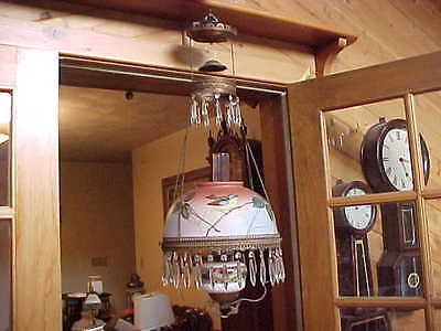 Antique Victorian Parlor Hanging Library Oil Lamp Blue Bird Matching Shade& Font
