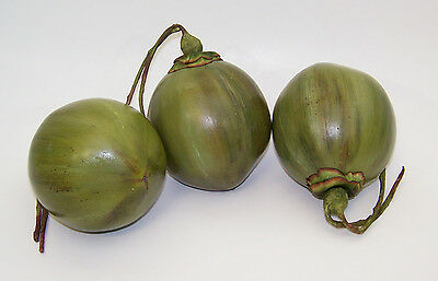 Designer Decorative One Artificial Faux Fake Green Smooth Coconut Fruit