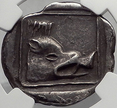 LYTTOS in CRETE Rare 320BC Silver Stater Ancient Greek Coin EAGLE BOAR NGC Ch VF