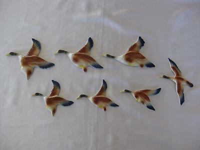 Ceramic Flying Mallard Wall Ducks X 7 - Retro (D704)