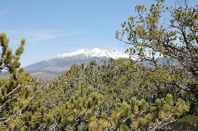 5.28 Acres Colorado Land For Sale With Beautiful Mountain Views!  ~ $169.92 Mth