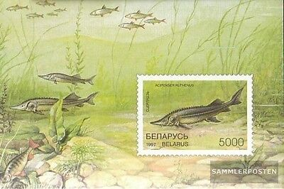 Belarus block15 (complete.issue.) unmounted mint / never hinged 1997 Fish