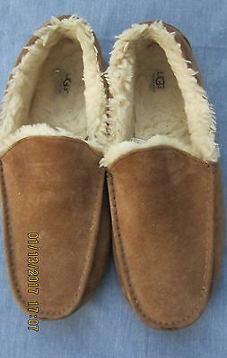 32a60b56f32 MENS UGG SLIPPERS Ascot Suede Shoes/Slippers Chestnut Warm & Fuzzy Men Size  14