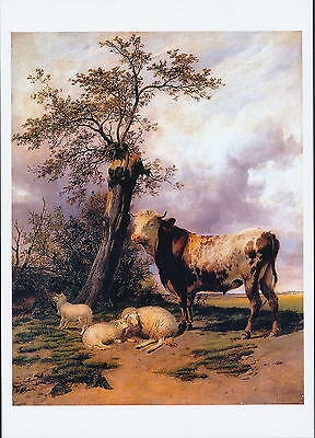 Cooper Print The King LORD OF PASTURES Farm Animals Bull Steer Sheep Ewes Lamb