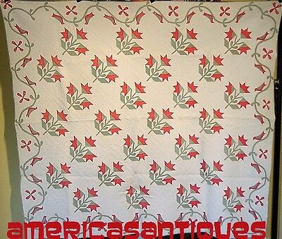 A Masters Work Bird Border Antique Applique Quilt Hand Appliqued Hand Quilted