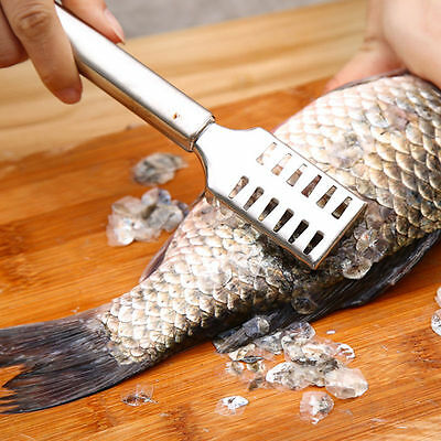 Stainless Steel Fish Scale Remover Cleaner Scaler Scraper Kitchen HF