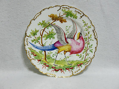 """18th Century Chelsea Gold Anchor 10"""" Cabinet Plate - Exotic Bird / Peacock"""