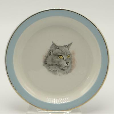 S. B. England Ceramic Cat Plate N. H. S. 1983 Blue Edge Gold Trim
