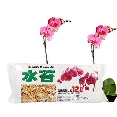 12L Natural Sphagnum Moss Nutrition Organic Fertilizer  Phalaenopsis Orchid