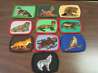 Scouts Canada Animal Patches Lot of 10    cjp x1