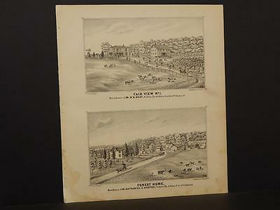 Ohio Champaign County Map Forest Home 1874 Double /Side  Q4#25
