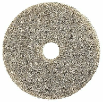 TOUGH GUY 1YNN6 Burnishing Pad, 27 In, Beige, PK 2