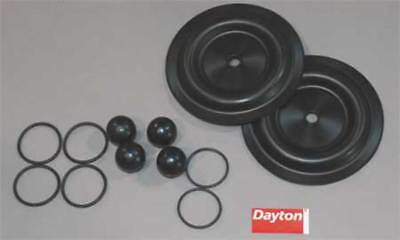 Pump Repair Kit,Fluid DAYTON 6PY70