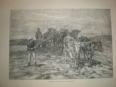 Ploughing on the Sussex Downs 1881 old print Frank Dadd