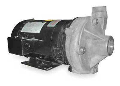 Stainless Steel 2 HP Centrifugal Pump 208-230/460V DAYTON 2ZXL4