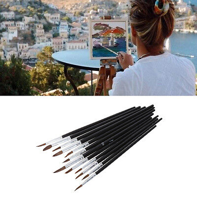 12Pcs Artist Paint Brushes Pointed Set Watercolor Oil Painting Acrylic Drawing