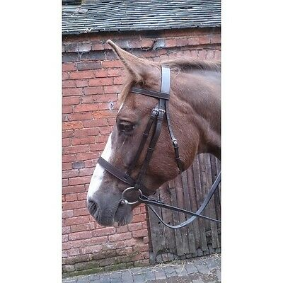 Sheldon Hunt / Hunter Bridle with Rubber Reins, - Natives, showing, cobs