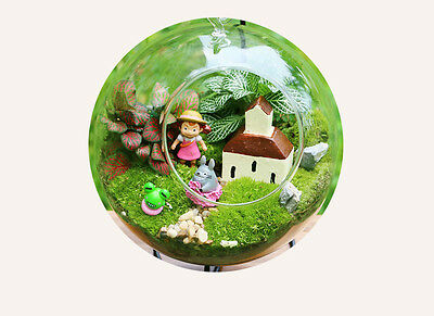 """Glass hanging globe terrarium for air plant moss wedding gift candle decor 6"""""""
