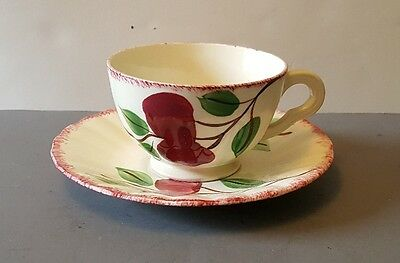 Vintage Blue Ridge Crab Apple Cup and Saucer Southern Potteries