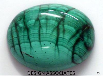 Malachite Cabochon 26.11X19.65 Mm Oval Cut Great Green Color  All Natural