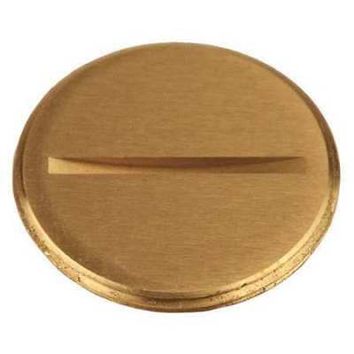 "RACO 6226 Flush Replacement Plug,1-1/2"" L,Brass"