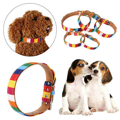 Beautiful Dog Cat Puppy Pet Leash Collar Adjustable Rainbow Neck Buckle Strap