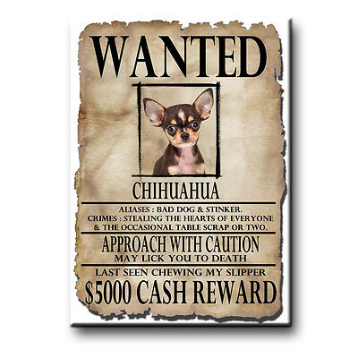 CHIHUAHUA Wanted Poster FRIDGE MAGNET No 3 DOG