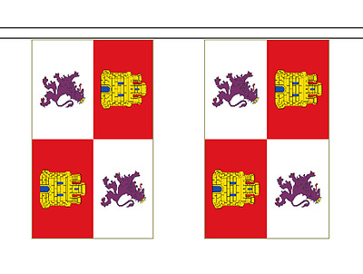 Spain Castile and León Polyester Flag Bunting - 6m long with 20 Flags