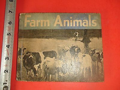 JD581 Vintage 1935 Hardcover Farm Animal Book Dominique Frizzle Chickens